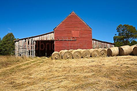 hay;hay bales;hay bales;haybale;haybales;round;round hay bale;round hay bales;round haybale;round haybales;grass;grasses;dry grass;dry grasses;farm;farms;farming;farmland;farmlands;farm land;farm lands;agriculture;agricultural;agricultural industry;stock;feed;cattle feed;rural;rural setting;rural settings;country;country setting;country settings;rolled hay;rolled hay bale;rolled hay bales;rolled haybale;rolled haybales;stock feed;cut grass;animal feed;shed;sheds;farming shed;farming sheds;corrugated iron;corrugated iron shed;corrugated iron sheds;timber;timber shed;timber sheds;rundown;rundown shed;rundown sheds;run down;run down shed;run down sheds;tree;trees;blue sky;blue skies;clear blue sky;clear blue skies;copyspace;copy space;textspace;text space