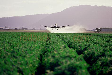 aerial crop spraying growing cropping harvest harvesting rural f