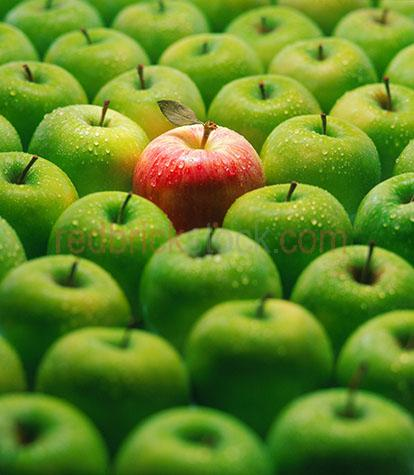 apples apple green red fruit food health healthy crop crops fres