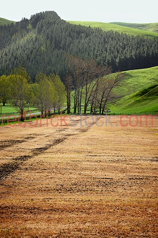 new zealand;nz;mountain;mountains;mountainous;mountain range;mountain ranges;mountainside;hill;hills;hillside;hilly;landscape;landscapes;new zealand landscape;new zealand landscapes;nz landscape;nz landscapes;tree;trees;green tree;green trees;pine tree;pine trees;pine plantation;pine plantations;tree plantation;tree plantations;plantation;plantations;farm;farms;farming;farming industry;agriculture;agricultural;agriculture industry;agricultural industry;pasture;pastures;lush;lush pasture;lush pastures;meadow;meadows;lush meadow;lush meadows;grass;grasses;green grass;green grasses;lush grass;lush grasses;lush green grass;lush green grasses;paddock;paddocks;farm paddock;farm paddocks;farming paddock;farming paddocks;fence;fences;fenced;fenced paddock;fenced paddocks;fenceline;fencelines;fence line;fence lines;farmland;farmlands;farm land;farm lands;farming property;farming properties;new zealand farm;new zealand farms;new zealand farming;nz farm;nz farms;nz farming;field;fields;lush field;lush fields;country;countryside;country setting;country settings;rural;rural area;rural areas;rural setting;rural settings;crops;crops;harvest;harvests;harvested;harvested crop;harvested crops;road;roads;tourist attraction;tourist attractions;new zealand tourist attraction;new zealand tourist attractions;nz tourist attraction;nz tourist attractions;tourist destination;tourist destinations;new zealand tourist destination;new zealand tourist destinations;nz tourist destination;nz tourist destinations;tourism;tourism new zealand;new zealand tourism;tourism nz;nz tourism;travel;travels;traveling;overseas travel;over seas travel;overseas;over seas;holiday;holidays;vacation;vacations;trip;trips;overseas holiday;overseas holidays;over seas holiday;over seas holidays;overseas vacation;overseas vacations;over seas vacation;over seas vacations;overseas trip;overseas trips;over seas trip;over seas trips;journey;journeys;overseas journey;overseas journeys;over seas journey;over seas journeys;day;