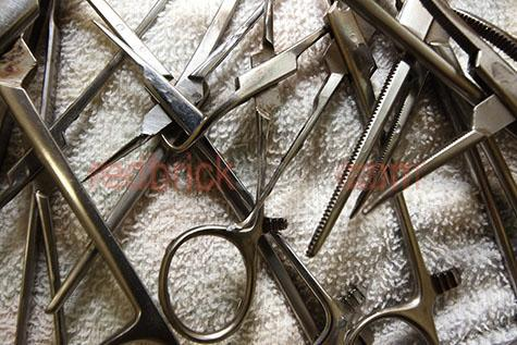 surgical clamp;surgical clamps;surgery;surgeries;medical;medic;forcep;forceps;kelly forceps;hemostats;hemostat;tool;tools;equipment;equipments;metal;metals;steel;stainless steel;instrument;instruments;hospital;hospitals;theatre;theatres;opterating;operate;operates;operations;operation;healthcare;health care;supply;supplies;close up;close ups;close-up;close-ups;professional;pro;profession;professions;clinic;clinical;clinics;terrycloth;terry cloth;terry towelling;terry towel;textile;textiles