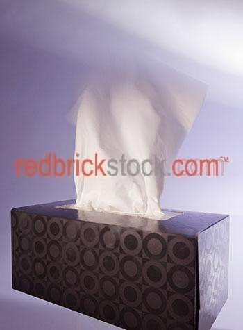 tissue;tissues;tissue box;tissue boxes;box of tissues;sick;cold;colds;flu;flus;sneeze;sneezes;sneezed;health;unhealthy;pull;pulling;influenza;hayfever;allergy;allergies;hygiene;hygienic;unwell;one hand;one box;one tissue