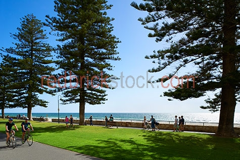 jimmy melrose park;glenelg;adelaide;south australia;south australian;sth australia;sth australian;sa;australia;australian;aus;jetty road;park;parks;public park;public parks;lush park;lush parks;grass;grasses;green grass;green grasses;lush;lush grass;lush grasses;lush green grass;lush green grasses;relax;relaxing;relaxing in park;relaxing at park;couple;couples;exercise;exercises;exercising;exercising in park;exercising at park;walk;walks;walking;friend;friends;mate;mates;pal;pals;hanging out with friends;hanging out with mates;hanging out with pals;family;families;bike;bikes;bike ride;bike rides;bike rider;bike riders;riding a bike;riding bike;riding bikes;bike riding;cycle;cycling;cyclist;cyclists;cityscape;cityscapes;adelaide cityscape;adelaide cityscapes;glenelg cityscape;glenelg cityscapes;city;cities;lifestyle;lifestyles;adelaide lifestyle;adelaide lifestyles;adelaide living;glenelg lifestyle;glenelg lifestyles;glenelg living;city lifestyle;city lifestyles;city living;maritime;marine;ocean;oceans;ocean water;ocean waters;sea;seas;sea water;sea waters;water;waters;blue water;waters surface;beach;beaches;glenelg beach;adelaide beach;adelaide beaches;australian beach;australian beaches;pristine;pristine beach;pristine beaches;pristine australian beach;pristine australian beaches;at beach;at the beach;on beach;on the beach;sky;skies;blue sky;blue skies;clear sky;clear skies;clear blue sky;clear blue skies;against blue sky;against clear blue sky;against clear sky;day;daytime;day time;during the day;in the daytime;in the day time;daylight;day light;tourist attraction;tourist attractions;adelaide tourist attraction;adelaide tourist attractions;glenelg tourist attraction;glenelg tourist attractions;tourist destination;tourist destinations;adelaide tourist destination;adelaide tourist destinations;glenelg tourist destination;glenelg tourist destinations;tourism;tourism australia;australian tourism;tourism adelaide;adelaide tourism;australians;boardwalk;boardwalks;board walk;board walks;footpath;footpaths;foot path;foot paths;path;paths;pedestrian footpath;pedestrian footpaths;pedestrian foot path;pedestrian foot paths;pedestrian path;pedestrian paths;beachfront;beach front;seascape;seascapes;australian seascape;australian seascapes;waterfront;waterfront living;beachfront;beach front;tree;trees;cyprus tree;cyprus trees;person;people;australian person;australian people;australians;shade;tree shade;shadow;shadows;rights managed;rm;rights managed image;rights managed images;rm image;rm images;copyspace;copy space;textspace;text space;horizontal;at;on;in;and;&;+