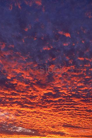 cloud clouds orange sun sunset sky skies cumulus altocumulus cir