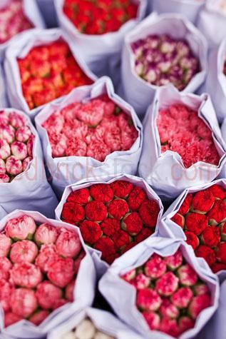 flower;flowers;floral;bloom;blooms;blooming;flower blooms;fresh;fresh flowers;bunches of flowers;carnation;carnations;bunches;blossoms;flower shop;flower store;florist;florists;flower market;flower markets;retail;retailer;shop;store;sale;sales;for sale;selling;sell;price;pricing;prices;sidewalk;footpath;curb;curbside;street;retail district;aroma;fragrant;fragrance;pink;colour;colours;colorful;colourful;colors;color;colour pink;color pink;pink flowers;bouquet;bouquets;love;romance;romantic;gift;gifts;closeup;close up;closeups;close ups;close-up;close-ups
