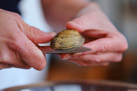 clam;clams;english;hands;hand;knife;knives;seafood;seafoods;shellfish;shellfishes;shell fish;shell fishes;opening clam;opening clams;hold;holding;shell;shells;delicacy;fresh;ingredient;ingredients;raw;uncooked;shell;shells;preparing;opening;caucasian hand;caucasian hands;shelling clam;shelling clams