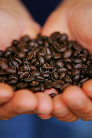 coffee beans;coffee bean;hand;hands;hold;holding;roasted;fresh;handful;caffeine;roasted beans;roasted bean;handfuls;ingredient;ingredients