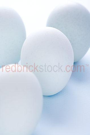 egg;eggs;blue;blues;white;whites;fresh;healthy;cooking;baking;bake;cook;white egg;white eggs;raw;uncooked;ingredient;ingredients;breakfast;brekkie;poultry;eggshells;egg shell;egg shells;eggshell