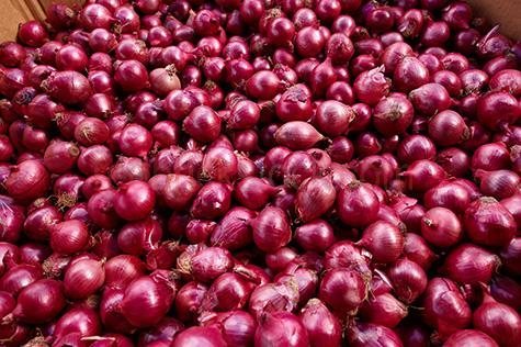 onion;onions;red onion;red onions;spanish onion;spanish onions;vegetable;vegetables;veg;veggies;veggie;market;markets;farmer's market;farmer's markets;farmers markets;farmers market;produce;fresh produce