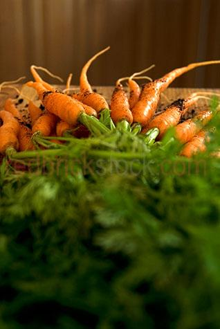 ingredient;ingredients;raw;fresh;uncooked;produce;leaf;leaves;leafy;still life;still lifes;vegetable;vegetables;veggie;veggies;veg;whole;uncut;unsliced;bunch;carrots;carrot;root vegetable;root vegetables;root;roots