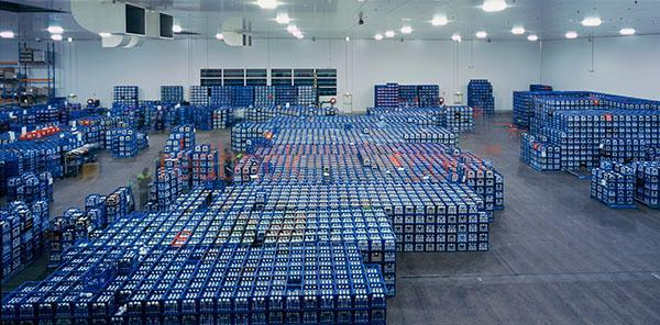 milk; dairy; dairy product; dairy products; milk bottle; milk bottles; bottled milk; bottle; bottles; bottled; milk crate; milk crates; crate; crates; drink crate; drink crates; milk warehouse; milk warehouses; warehouse; warehouses; coldroom; coldrooms; cold room; cold rooms; industrial coldroom; industrial coldrooms; industrial cold room; industrial cold rooms; warehouse coldroom; warehouse coldrooms; warehouse cold room; warehouse cold rooms; milk coldroom; milk coldrooms; milk cold room; milk cold rooms; dairy coldroom; dairy coldrooms; dairy cold room; dairy cold rooms; industry; industries; industrial; manufacturing industry; manufacturing industries; manufacturing; manufacture; manufactures; manufactured; manufacturing warehouse; manufacturing warehouses; manufacturing factory; manufacturing factories; factory; factories; milk factory; milk factories; dairy factory; dairy factories; industrial factory; industrial factories; work; works; working; worker; workers; at work; workman; workmen; work mate; work mates; work friend; work friends; work colleague; work colleagues; colleague; colleagues; team work; teamwork; warehouse worker; warehouse workers; factory worker; factory workers; workplace; workplaces; at the workplace; in the workplace; person; people; australian person; australian people; inside; indoors; interior; interiors; warehouse interior; warehouse interiors; factory warehouse; factory warehouses; coldroom warehouse; coldroom warehouses; working indoors; stack; stacks; stacked; stacked crates; stacked milk crates; cold; cold temperature; cold temperatures; drink; drinks; beverage; beverages;  blue; blues; colour blue; color blue; panorama; panoramas; panoramic; panoramics; pano; panos; wide view; wide views; australia; australian; aus; ready for distribution; copyspace; copy space; textspace; text space; and;