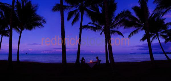 palm;cove;north;nth;queensland;qld;australia;tropics;tropical;is;purple; purples; colour purple; color purple;