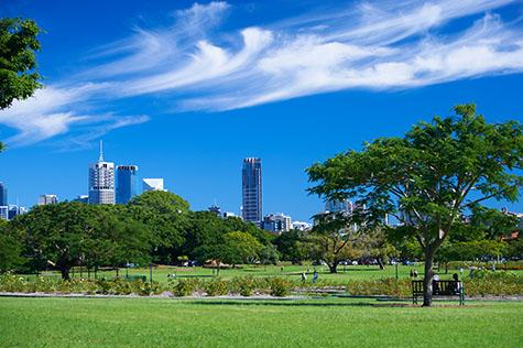 new farm park;new farm;newfarm park;newfarm;brisbane;brisbane city;queensland;qld;australia;australian;aus;park;parks;public park;public parks;family park;family parks;public;public place;public places;garden;gardens;tree;trees;greenery;green grass;green grasses;grass;grasses;jacaranda;jacarandas;jacaranda tree;jacaranda trees;lush;lush greenery;lush grass;lush park;lush parks;lush garden;lush gardens;lifestyle;brisbane lifestyle;queensland lifestyle;new farm lifestyle;newfarm lifestyle;walk;walks;walking;stroll;strolls;strolling;walking through new farm park;walking through newfarm park;walking through park;strolling through new farm park;strolling through newfarm park;strolling through park;relax;relaxes;relaxing;relaxing in the park;relaxing at the park;exercise;exercises;exercising;city;cities;cityscape;cityscapes;brisbane cityscape;brisbane cityscapes;city building;city buildings;skyrise;skyrises;highrise;highrises;high rise;high rises;hi rise;hi rises;hirise;hirises;blue sky;blue skies;cloud;clouds;whispy clouds;whisky clouds;bench;benches;bench chair;bench chairs;recreation;recreational;recreational activity;recreational activities;outdoors;outdoor activity;outdoor activities;copyspace;copy space;textspace;text space