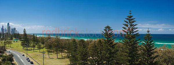 gold coast ocean sea sunshine lifestyle leisure city park trees