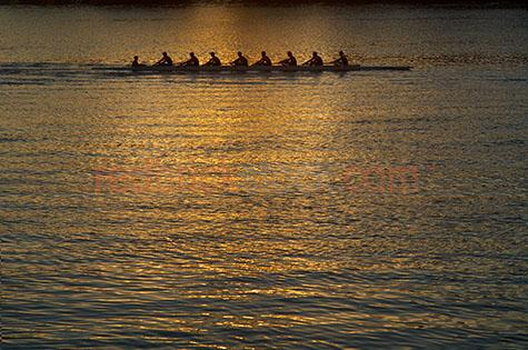 row rowing rower rowers sport brisbane river sunrise sunet sun r