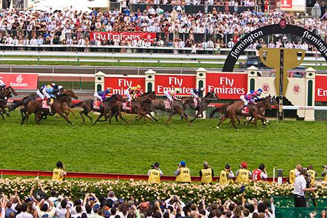 makybe diva;race;races;racing;horse racing;horse race;horse races;melbourne cup;melbourne;victoria;australia;aus;racing carnival;melbourne racing carnival;the cup;racing cup;horse racing cup;jockey;jockeys;horse;horses;animal;animals;flemington;flemington race course;flemington racing course;race course;race courses;racing course;racing courses;movement;move;moves;moving;run;runs;running;gallop;gallops;galloping;finish line;finish lines;crossing the finish line;crossing finish lines;competition;competitive;flemington race track;flemington racing track;race track;race tracks;racing track;racing tracks;grass;green grass;blue sky;blue skies;cloud;clouds;finish;finishes;finished;fast;speed;saddle;saddles;horse saddle;horse saddles;horse racing industry