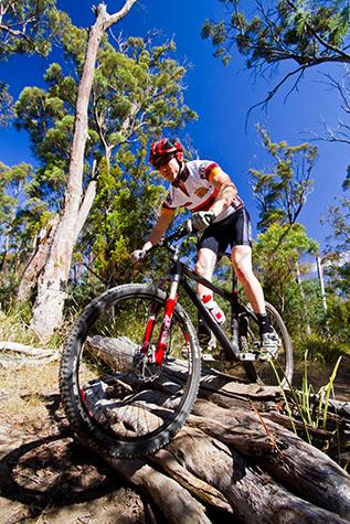 bike;bikes;mountain bike;mountains bikes;biking;bike rider;bike riders;outdoor;outdoors;outside;log;logs;race;races;racing;competition;competitions;bush;bushes;reserve;launceston;tasmania;tassie;tas;australia;suatralian;helmut;helmuts;cycle;cycles;bicycle;cyclists;cyclist;sport;sports;recreation;recreations;recreational;man;men;guy;guys;male;one person;one rider;fit;healthy;sportsman;sportsmen;sports man;sports men;blue sky;blue skies;eucalyptus tree;eucalyptus trees;eucalypt;downhill;down hill