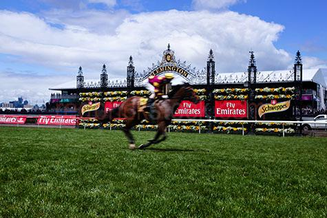 race;races;racing;horse racing;horse race;horse races;melbourne cup;melbourne;victoria;australia;aus;racing carnival;melbourne racing carnival;the cup;racing cup;horse racing cup;jockey;jockeys;horse;horses;animal;animals;flemington;flemington race course;flemington racing course;race course;race courses;racing course;racing courses;movement;move;moves;moving;run;runs;running;gallop;gallops;galloping;finish line;finish lines;crossing the finish line;crossing finish lines;competition;competitive;flemington race track;flemington racing track;race track;race tracks;racing track;racing tracks;grass;green grass;blue sky;blue skies;cloud;clouds;finish;finishes;finished;fast;speed;saddle;saddles;horse saddle;horse saddles;horse racing industry