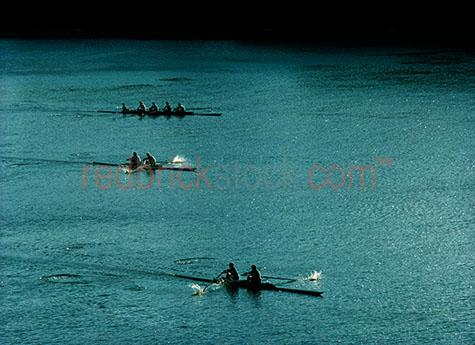 rowing row rowers sport brisbane water south rower men boat crew