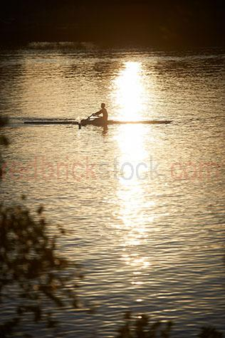 rowers;rowing;paddling;sport;sports;training;rowing training;row;rows;fitness;staying fit;endurance;endurance sport;endurance sports;man rowing;men rowing;men rowers;kyak;kyaks;kyaking;brisbane;brisbane river;river;rivers;water;river water;silhouette;silhouettes;silhouetted;in silhouette;silhouetted rowers;silhouetted rower;people;person;action;paddle;paddles;exercise;exercising reflection;reflections;water reflection;water reflections;water reflecting sun;sun reflection on water;sun reflections on water;sun reflection on river;sun reflections on river;sun;sunny;bright sun;water surface;sunrise;sunrises;sun rise;sun rises;sunrising;sun rising;early morning;morning;leaf;leaves;brisbane;queensland;qld;australia;australian;aus;gold;golden;golden colour;golden color;warm tones;sunlight;sun light;copyspace;copy space;textspace;text space;haze;hazey;hazey morning;morning haze;glistening water;glistening;glisten;glistens;sparkling;sparkling water;sparkle;sparkles