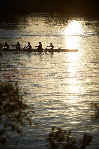 rowers;rowing;team sport;team sports;paddling;sport;sports;training;rowing training;row;rows;fitness;staying fit;endurance;endurance sport;endurance sports;men's rowing team;men rowing;men rowers;men rowing;mens team sports;men's team sports;mens sports;men's sports;high school rowing team;school sports;boys rowing team;kyak;kyaks;kyaking;brisbane;brisbane river;river;rivers;water;river water;silhouette;silhouettes;silhouetted;in silhouette;silhouetted rowers;silhouetted rowing team;silhouetted rowing teams;people;person;action;paddle;paddles;race;races;racing;exercise;exercising reflection;reflections;water reflection;water reflections;water reflecting sun;sun reflection on water;sun reflections on water;sun reflection on river;sun reflections on river;sun;sunny;bright sun;water surface;sunrise;sunrises;sun rise;sun rises;sunrising;sun rising;early morning;morning;leaf;leaves;brisbane;queensland;qld;australia;australian;aus;gold;golden;golden colour;golden color;warm tones;sunlight;sun light;copyspace;copy space;textspace;text space;haze;hazey;hazey morning;morning haze;glistening water;glistening;glisten;glistens;sparkling;sparkling water;sparkle;sparkles