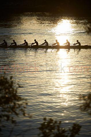 rowers;rowing;rowing eight;rowing 8;team sport;team sports;paddling;sport;sports;training;rowing training;row;rows;fitness;staying fit;endurance;endurance sport;endurance sports;men's rowing team;men rowing;men rowers;men rowing;mens team sports;men's team sports;mens sports;men's sports;high school rowing team;school sports;boys rowing team;kyak;kyaks;kyaking;brisbane;brisbane river;river;rivers;water;river water;silhouette;silhouettes;silhouetted;in silhouette;silhouetted rowers;silhouetted rowing team;silhouetted rowing teams;people;person;action;paddle;paddles;race;races;racing;exercise;exercising reflection;reflections;water reflection;water reflections;water reflecting sun;sun reflection on water;sun reflections on water;sun reflection on river;sun reflections on river;sun;sunny;bright sun;water surface;sunrise;sunrises;sun rise;sun rises;sunrising;sun rising;early morning;morning;leaf;leaves;brisbane;queensland;qld;australia;australian;aus;gold;golden;golden colour;golden color;warm tones;sunlight;sun light;copyspace;copy space;textspace;text space;haze;hazey;hazey morning;morning haze;glistening water;glistening;glisten;glistens;sparkling;sparkling water;sparkle;sparkles