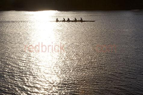 rowers;rowing;rowing four;rowing 4;team sport;team sports;paddling;sport;sports;training;rowing training;row;rows;fitness;staying fit;endurance;endurance sport;endurance sports;men's rowing team;men rowing;men rowers;men rowing;mens team sports;men's team sports;mens sports;men's sports;high school rowing team;school sports;boys rowing team;kyak;kyaks;kyaking;brisbane;brisbane river;river;rivers;water;river water;silhouette;silhouettes;silhouetted;in silhouette;silhouetted rowers;silhouetted rowing team;silhouetted rowing teams;people;person;action;paddle;paddles;race;races;racing;exercise;exercising reflection;reflections;water reflection;water reflections;water reflecting sun;sun reflection on water;sun reflections on water;sun reflection on river;sun reflections on river;sun;sunny;bright sun;water surface;early morning;morning;leaf;leaves;brisbane;queensland;qld;australia;australian;aus;gold;gold;golden;golden colour;golden color;warm tones;sunlight;sun light;copyspace;copy space;textspace;text space;haze;hazey;hazey morning;morning haze;glistening water;glistening;glisten;glistens;sparkling;sparkling water;sparkle;sparkles