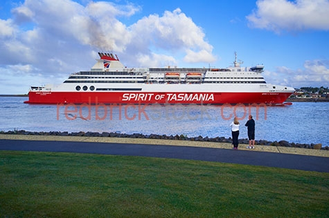 the spirit of tasmania;spirit of tasmania;tasmania;tassie;tazzie;tas;australia;australian;aus;ship;ships;shipping;boat;boats;boating;ferry;ferries;transport;transports;transportation;transporting;passenger;passengers;spirit of tasmania passenger;spirit of tasmania passengers;person;people;australians;travel;travels;traveling;travelling;traveller;travellers;tourist attraction;tourist attractions;tasmanian tourist attraction;tasmanian tourist attractions;tas tourist attraction;tas tourist attractions;tourist destination;tourist destinations;tasmanian tourist destination;tasmanian tourist destinations;tas tourist destination;tas tourist destinations;tourism;tourism australia;australian tourism;tourism tasmania;tasmanian tourism;holiday;holidays;vacation;vacations;trip;trips;marine;ocean;oceans;ocean water;ocean waters;sea;seas;sea water;sea waters;water;waters;blue water;waters surface;aquatic;seascape;seascapes;australian seascape;australian seascapes;tasmanian seascape;tasmanian seascapes;coast;coasts;coastal;coastal lifestyle;coastal lifestyles;coastal living;lifestyle;lifestyles;australian coast;australian coasts;coastline;coastlines;coast line;coast lines;australian coastline;australian coastlines;australian coast line;australian coast lines;reflection;reflections;water reflection;water reflections;blue sky;blue skies;against blue sky;day;daytime;day time;during the day;in the daytime;in the day time;daylight;day light;cloud;clouds;white cloud;white clouds;fluffy cloud;fluffy clouds;white fluffy cloud;white fluffy clouds;fluffy white cloud;fluffy white clouds;cumulonimbus cloud;cumulonimbus clouds;cloudy sky;cloudy skies;cloudy;bird;birds;seagull;seagulls;sea gull;sea gulls;grass;grasses;green grass;green grasses;rights managed;rm;rights managed image;rights managed images;rm image;rm images;copyspace;copy space;textspace;text space;horizontal;at;on;in;and;&;+