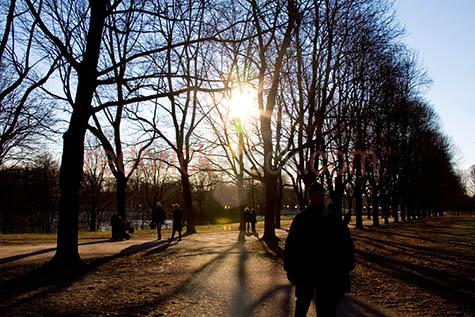 park;parks;winter in norway;europe;oslo norway;silhouetted trees;silhouetted tree;travel;traveling;streetscape;street scape;sunsetting;sun setting;people walking in park;people walking in parks;deciduous tree;deciduous trees;winter in europe;european park;european parks