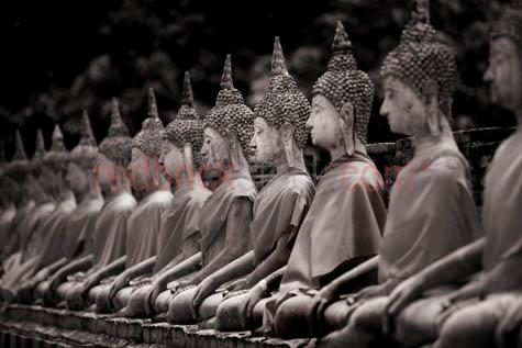 buddahs;wat yai chaimongkol;ayutthaya;thailand;buddah;budda;buddas;statue;statues;religion;religeous;sacred;holy;ancient;tourist attraction;thai;stone;carved;carving;sculpture;sculptures;icons;iconic;religious;buddhist;devotion;devoted icons;hindu;hinduism;buddhist;buddhism;sanskrit;enlightened;zen;asia;asian;south east asia;south east asian;gautama