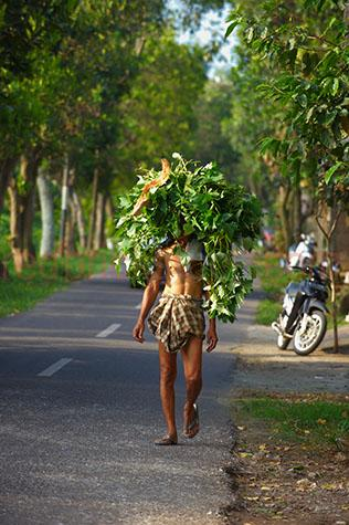 bali;balinese;indonesia;indonesian;asia;asian;man;men;person;people;one man;one person;vine;vines;leaf;leaves;feed;fodder;sweet potato leaves;carry;carrying;food;pig food;pig feed;animal feed;animal food;local;locals;native;natives;walking down road;walking down roads;street;streets;street scene;street scenes;streetscene;streetscenes;streetscape;streetscapes