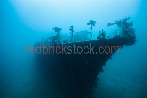 shipwreck;shipwrecks;ship wreck;ship wrecks;wreck;wrecks;ship;ships;boat;boats;underwater;under water;fiji;fijian;melanesia;melanesian;pacific harbor;maritime;marine;ocean;oceans;ocean water;ocean waters;sea;seas;sea water;sea waters;water;waters;blue water;below the surface;island;islands;tropical;tropic;tropics;tropical island;tropical islands;marine life;sea life;sealife;aquatic;nature;seascape;seascapes;underwater photography;under water photography;scuba dive;scuba dives;scuba diving;dive;dives;diving;tourist attraction;tourist attractions;tourist destination;tourist destinations;fiji tourist attraction;fiji tourist attractions;fiji tourist destination;fiji tourist destinations;fijian tourist attraction;fijian tourist attractions;fijian tourist destination;fijian tourist destinations;explore;explores;exploring;exploration;exploring underwater;exploring under water;silhouette;silhouettes;silhouetted;in silhouetted;shipwreck silhouette;shipwreck silhouettes;silhouette shipwreck;silhouetted shipwrecks;shipwreck in silhouette;shipwrecks in silhouette;ship wreck silhouette;ship wreck silhouettes;silhouette ship wreck;silhouetted ship wrecks;ship wreck in silhouette;ship wrecks in silhouette;blue;blues;colour blue;color blue;close-up;close-ups;close up;close ups;closeup;closeups;close-up view;close-up views;closeup view;closeup views;close-up views;close-up views;close up views;closeup views;copyspace;copy space;textspace;text space