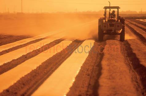 tractor;ploughing;field;fields;paddock;crop;cropping;agricultue;
