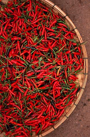 flavour;flavours;flavor;flavors;flavouring;flavoring;flavourings;flavorings;flavoured;flavored;chili;chilies;chilis;chilli;chillis;chilli's;spices;spice;spicy;food;hot;fresh food;ingredient;ingredients;red chili;red chillies;red chilies;red chilli;pepper;peppers;red pepper;red peppers;green pepper;green peppers;raw;uncooked;market;markets;food market;food markets;farmers market;farmers markets;farmer's market;farmer's markets