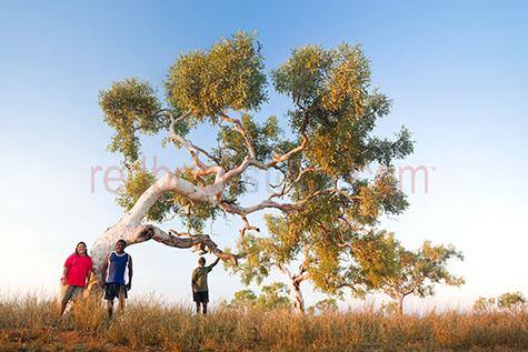 australia;australian;aus;outback;out back;outback australia;out back australia;australian outback;australian out back;landscape;landscapes;australian landscape;australian landscapes;nature;tree;trees;gum tree;gum trees;red gum;red gum tree;red gum trees;branch;branches;tree branch;tree branches;trunk;trunks;tree trunk;tree trunks;leaf;leaves;tree leaf;tree leaves;country;countryside;country setting;country settings;rural;rural area;rural areas;rural setting;rural settings;desert;deserts;australian desert;australian deserts;red earth;earth;dirt;dirts;soil;soils;sand;sands;sandy;sandy desert;sandy deserts;sand desert;sand deserts;land;dry land;indigenous land;bare;bare land;sparse;sparse land;barren;barren land;drought;droughts;community;communities;indigenous;indigenous community;indigenous communities;indigenous person;indigenous people;aboriginal;aboriginals;aboriginal person;aboriginal people;aborigine;aborigines;native australian;native australians;man;men;guy;guys;male;males;australian man;australian men;australian guy;australian guys;australian male;australian males;person;people;australian;australians;australian person;australian people;indigenous man;indigenous men;indigenous guy;indigenous guys;indigenous male;indigenous males;aboriginal man;aboriginal men;aboriginal guy;aboriginal guys;aboriginal male;aboriginal males;woman;women;lady;ladies;female;females;australian woman;australian women;australian lady;australian ladies;australian female;australian females;indigenous woman;indigenous women;indigenous lady;indigenous ladies;indigenous female;indigenous females;aboriginal woman;aboriginal women;aboriginal lady;aboriginal ladies;aboriginal female;aboriginal females;portrait;portraits;three;3;three people;3 people;smile;smiles;smiling;person smiling;people smiling;happy;happy person;happy people;grass;grasses;dry grass;dry grasses;day;daytime;day time;daylight;day light;sunlight;sun light;blue sky;blue skies;clear sky;clear skies;clear blue sky;clear blue skies;copyspace;copy space;textspace;text space