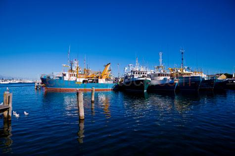 fremantle;perth;australia;western australia;harbour;boats;fishing boats;trawlers;fishing trawlers;feet;fishing fleet;erth;berthed;reflections;bay;bays;blue sky;day;daytime;copyspace;copy space;textspace;text space;seagull;seagulls