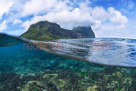 lord howe island;lord howe;howe;howe island;island;australia;australian;aus;new south wales;nsw;south pacific ocean;coral;corals;soft coral;soft corals;hard coral;hard corals;coral reef;coral reefs;reef;reefs;swim;swims;swimming;nature;natural habitat;natural habitats;ocean;sea;seas;sea water;water;wet;blue water;tropics;tropical;underwater;under water;underwater photography;under water photography;marine;tourist destination;tourist destinations;tourist attraction;tourist attractions;scenic;underwater view;under water view;seascape;seascapes;copyspace;copy space;textspace;text space;over-under;over under;above below;waters surface;shallow water;holiday;holidays;vacation;vacations;snorkel;snorkels;snorkelling;colourful;colorful;marine park;marine parks;protected area;protected areas;and;&;+