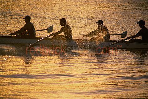 row;rower;rowers;rowing;river;sport;brisbane;water;sunset;sunrise;set;rise;sun;men;west end;coronation drive;silhouette;silhouetted;silhouettes