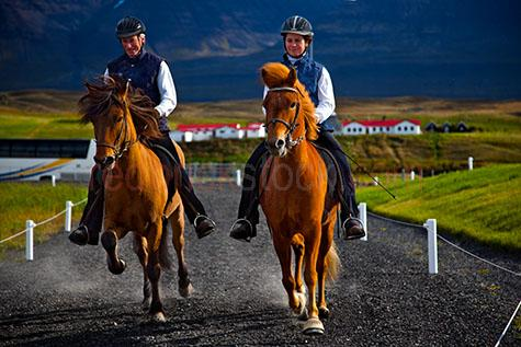 horse;horses;ride;rides;riding;woman;man;women;men;two people;father and daughter;father & daughter;rider;riders;trot;trots;trotting;two horses;iceland;icelandic;scandinavia;europe;euro;european;animal;animals;mammal;mammals;helmut;helmuts;recreation;recreations;recreational;horesback;horse back;equine;horseride;horseriding;road;roads;street;streets